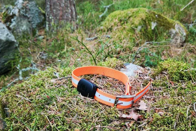 MiniFinder Atto - one of the market's best GPS trackers