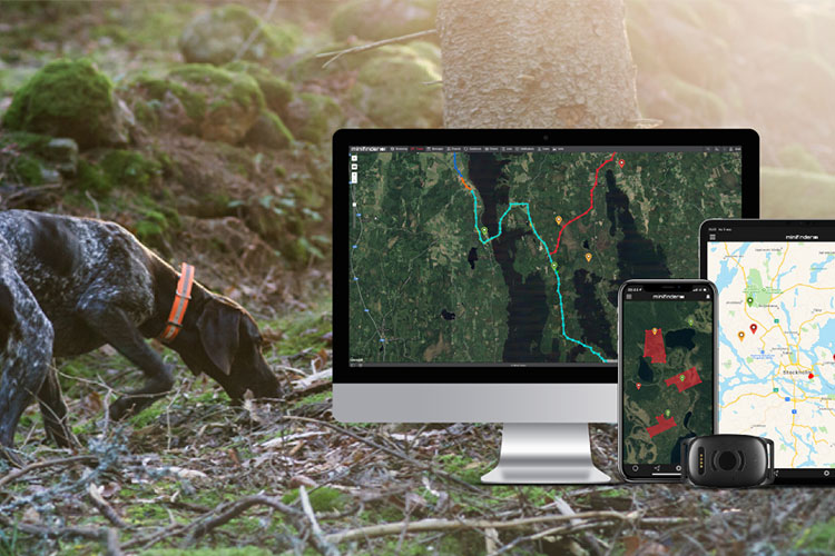 Track your hunting dog with Atto Pro